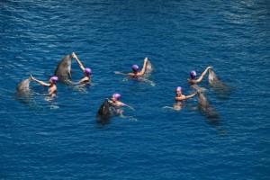 Ensayo general de nadadoras de 'Las Noches del Oceanográfic'