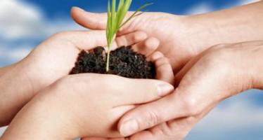 Consejos para la jardinería ecológica