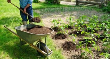Preparar el suelo para cultivar