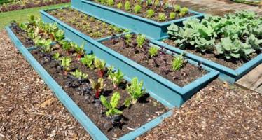 Tipos de jardineras