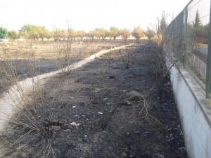 Un incendi a Canals, possiblement intencionat, crema terrenys prop d'una escola i de cases d'Aiacor