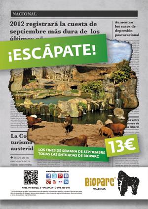 Personas se escapan de la subida del iva en bioparc - Bioparc precios valencia ...