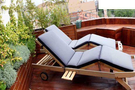 Plantas para terraza y jardín en otoño