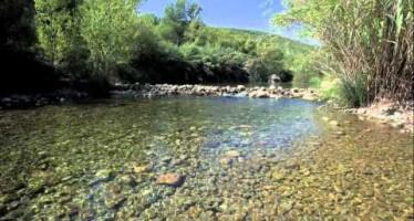 Los ciudadanos de Castellón publicitan la provincia a través de Moviment 135