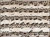 Se crea una base de datos sobre música tradicional valenciana