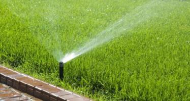 Cómo ahorrar agua en el riego