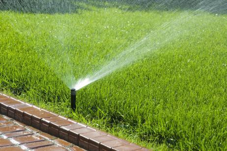 Ahorrar agua en el riego