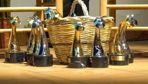 trofeos-la-lluna-2012