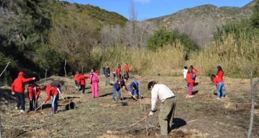 La Generalitat y las cooperativas evitan con la agrupación de derechos perder ayudas a favor de la agricultura valenciana