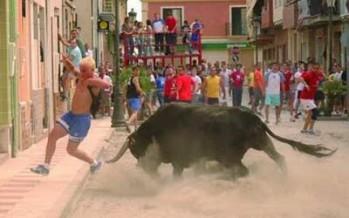 Muere en Paiporta al ser corneado por un toro al intentar ayudar a un joven que resbaló