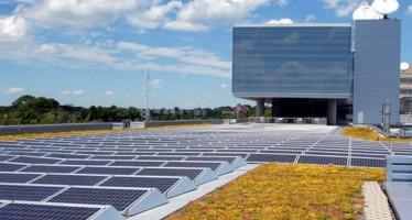 Un sistema de subastas de renovables basado en la experiencia internacional, imprescindible para cumplir con los objetivos para 2020