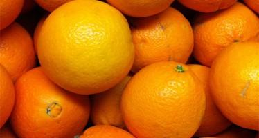 LA UNIÓ de Llauradors denuncia robos continuos de fruta en la comarca de la Vall d'Albaida