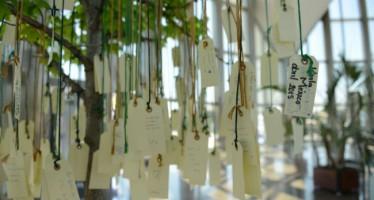 Los visitantes del Oceanogràfic escriben más de 800 tarjetas en el Árbol de los Ecodeseos