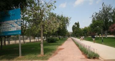 El Circuito de Running 5K del Jardín del Turia, a punto