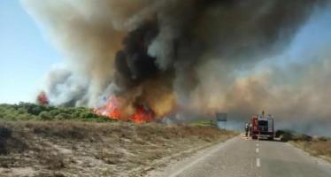 Nuevas vías forestales en El Saler para facilitar la lucha contra los incendios