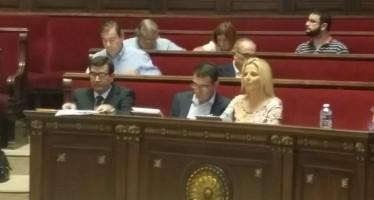 Ciudadanos (C's) de Valencia propone a todos los grupos municipales un Gran Pacto por las Fiestas y las Tradiciones
