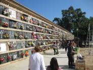 El Ayuntamento refuerza los servicios de EMT y los accesos a los cementerios de Valencia