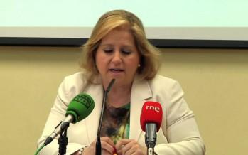 Ramón-Llin denuncia que Valencia no mejora la limpieza viaria pese a contar con más presupuesto