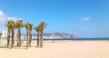 Benidorm renueva la bandera Ecoplayas en Levante, Poniente y Mal Pas