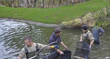 Bioparc Valencia, jornada de pesca comprometida con el medio natural