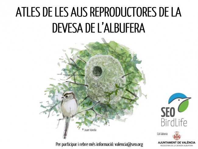 0414Cartell Atles Aus Reproductores 01 (1)