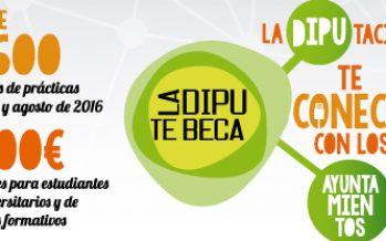 Cinco estudiantes realizarán prácticas en el Ayuntamiento de Náquera con La Dipu te Beca
