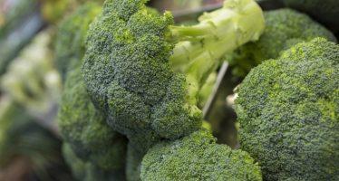 El brócoli contiene más del doble de vitamina K que la mayoría de alimentos