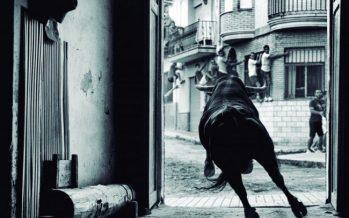 La justícia dóna la raó a l'Ajuntament de Godella en la prohibició de les festes taurines