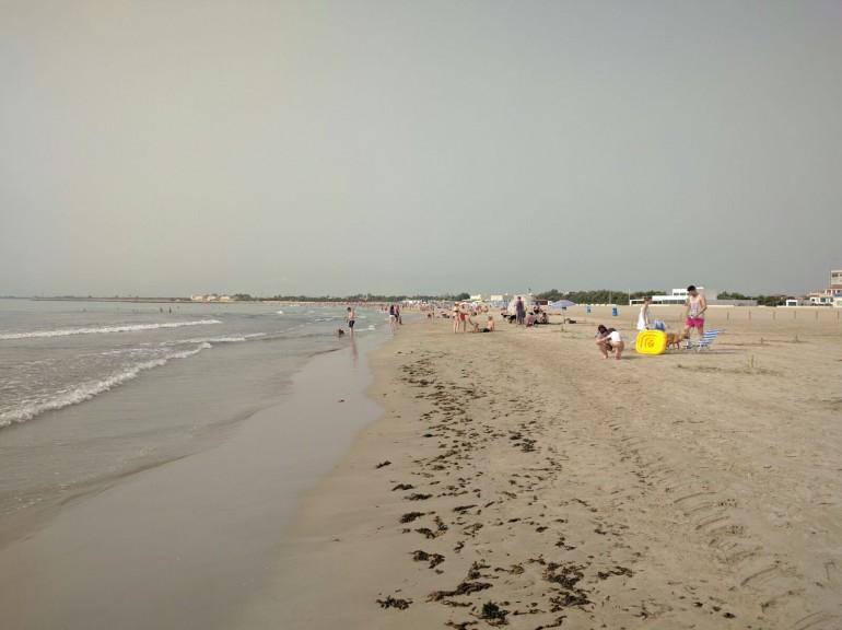 0720 Alges platja Pinedo (3)