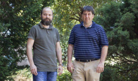 Investigadores de la UJI diseñan mapas de riesgo de incendios forestales más eficientes