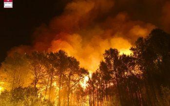 El Consell aprueba ayudas para paliar los daños producidos por los incendios forestales de junio