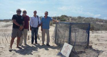 Álvaro agradece a los voluntarios el cuidado de los huevos de tortuga boba en El Saler