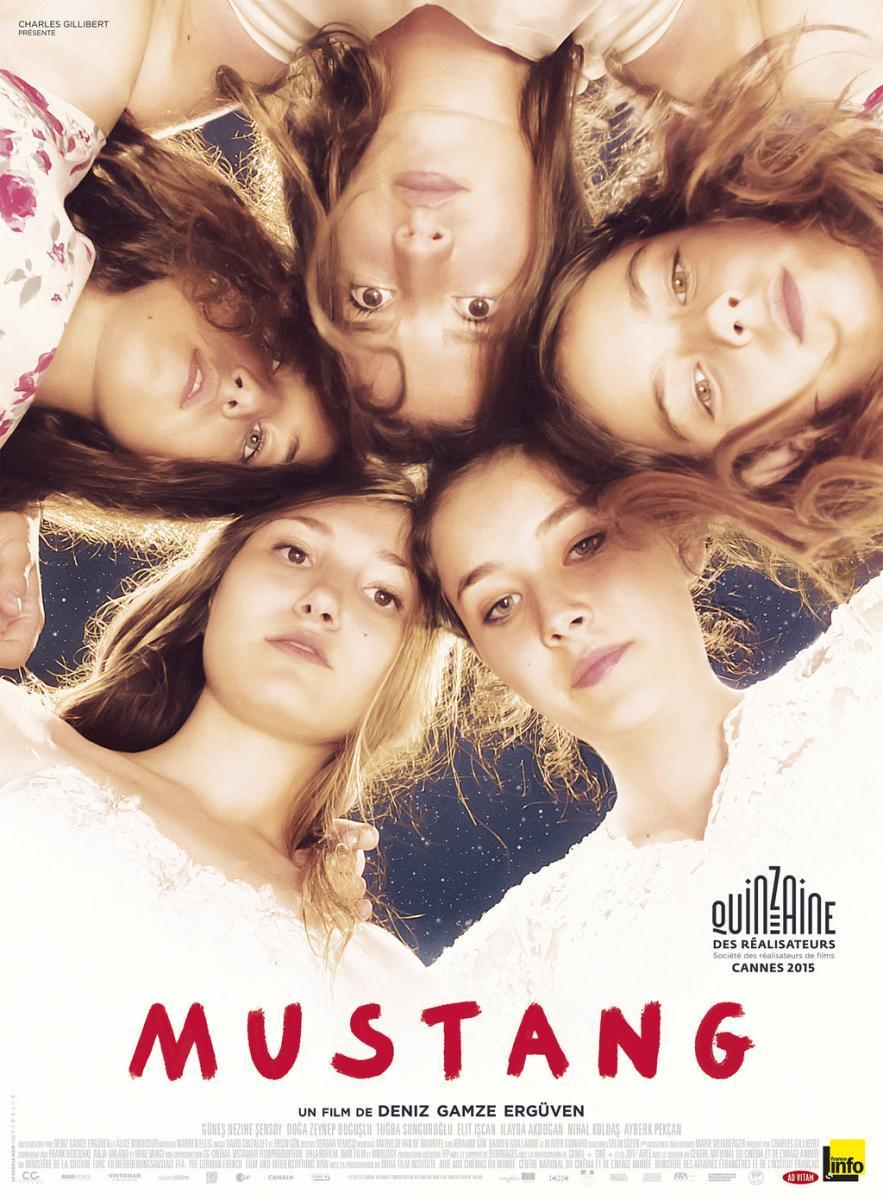 EDUC_16.08.21_mustang_poster