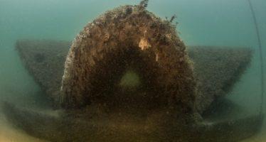 Bucear entre doradas y sargos en el arrecife artificial de La Malvarrosa