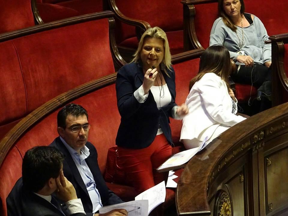 Amparo Picó durante su intervención en el Pleno. Foto: G. M. Ciudadanos