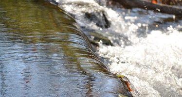 Arranca el proyecto CoSuDS para mejorar la gestión del agua de lluvia