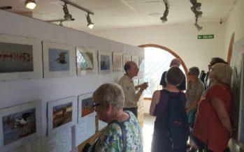 El Parque Natural de la Mata-Torrevieja celebra su 20 aniversario
