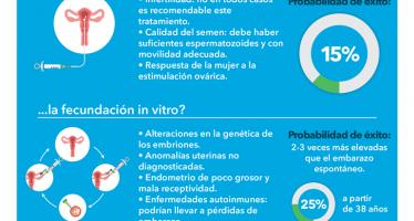 ¿Por qué fracasa un tratamiento  de reproducción asistida?