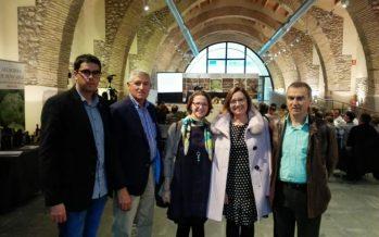 El Catálogo de Árboles Monumentales incorpora 95 nuevos olivos milenarios en la provincia de Castellón