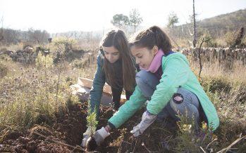 Un centenar de estudiantes de Los Serranos participan en la reforestación de la Sierra de Alcublas de WWF España y Ecovidrio
