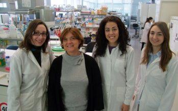El Centro Príncipe Felipe publica un estudio sobre cáncer que abre una nueva vía