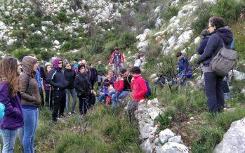 Agricultura participa en la reforestación de la zona afectada por el incendio en la Vall d'Ebo de 2015