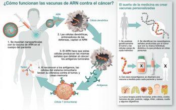 Vacunar a los pacientes para combatir sus tumores