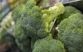La fibra del brócoli puede ayudar a prevenir la mitad de los casos de cáncer de colon
