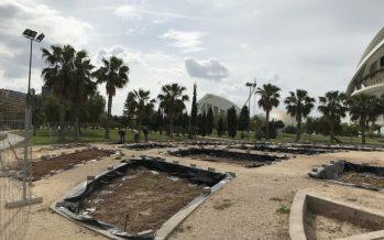 El Ayuntamiento de Valencia recupera la rosaleda de los Jardines del Turia