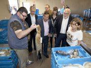 Agricultura promueve la marca 'Peix de Llotja' para garantizar la calidad de la producción valenciana