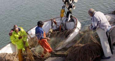 Agricultura impulsa las ayudas para fomentar una pesca y una acuicultura sostenible