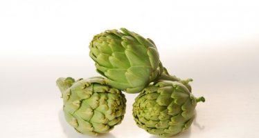 Investigadores potencian el valor nutricional de las alcachofas poco procesadas con radiación ultravioleta