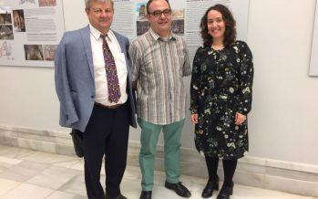 El Museo de la Ciudad estrena una exposición sobre la arqueología de las catedrales