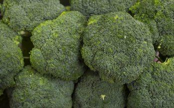 El brócoli puede ayudar a los casi 14 millones de españoles que padecen alguna alergia